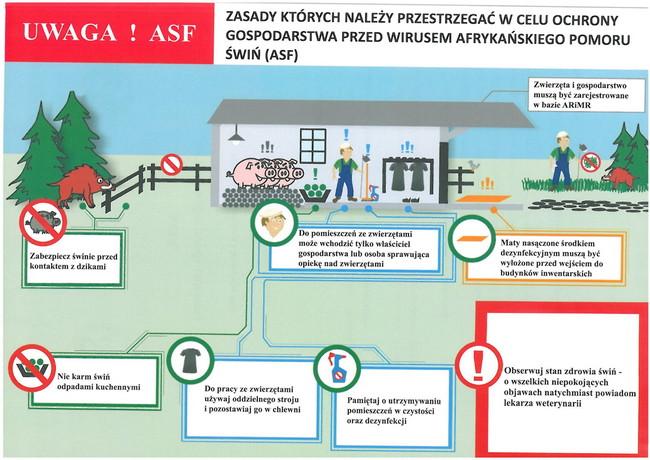 ASF – zasady ochrony gospodarstwa przed wirusem