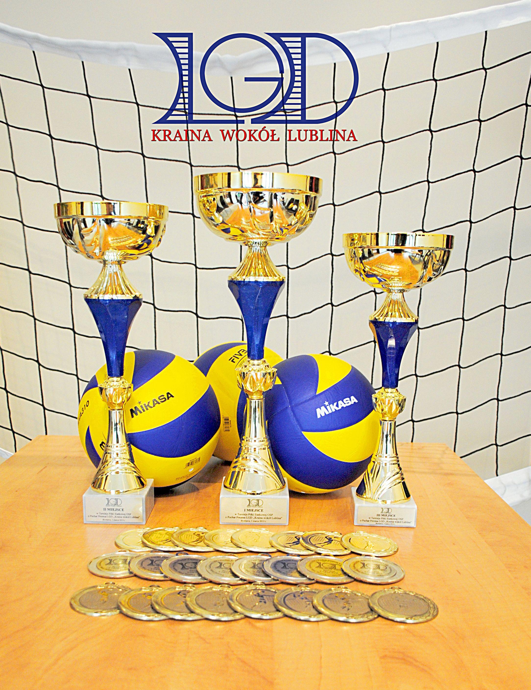 Turniej Piłki Siatkowej o Puchar Prezesa LGD – 23 listopada 2019